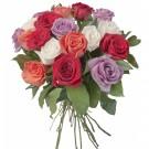 18-rosas-mistas-brasil