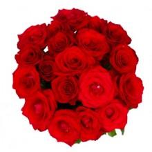 bouquet-18-rosas-vermelhas