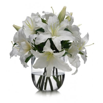 White Lilies in Glass Vase