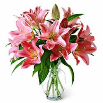 Pink Lilies In Glass Vase Flopwers Online Brazil Floresnaweb