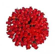 bouquet-100-red-roses