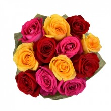 Bouquet of 12 Multi-colored Roses to Brazil