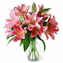 Pink Lilies in Glass Vase