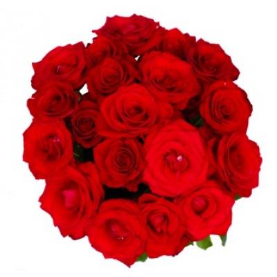 ramo-18-rosas-rojas-brasil