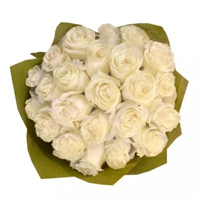 Bouquet 24 Rosas Brancas