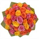 36-rosas-multicolor