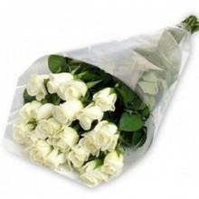 ramo-18-rosas-blancas-envio-brasil