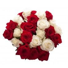 /ramo-24-rosas-rojas-y-blancas