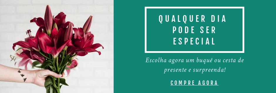 Entregamos Flores em Todo Brasil. Clique aqui