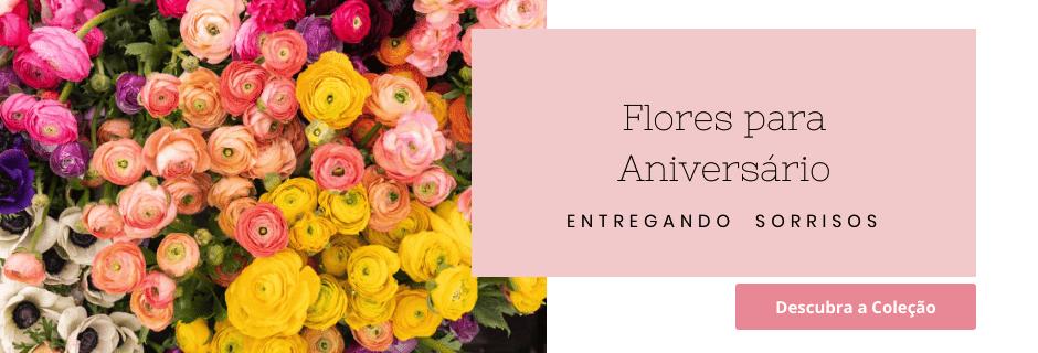 Flores de Aniversário 2020 - Flores e Cestas de Presente - Entregamos em Todo o Brasil