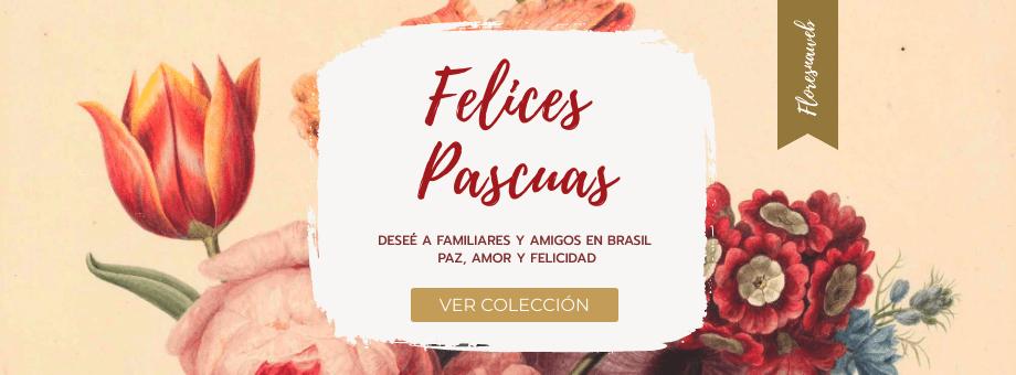 Regalo de Pascua: flores y cestas de regalo - Envio a Domicilio en todo Brasil