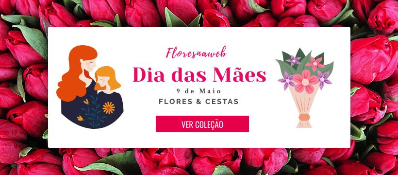 Flores e Cestas de Presente para o Dia das Mães - Entregamos em Todo o Brasil