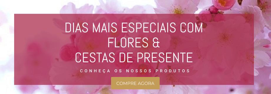 Flores e Cestas de Presente para Todos os Dia - Ver Coleção